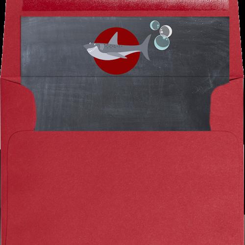 shark liner and envelope
