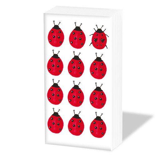 Twelve ladybug sniffs