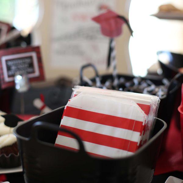 Red 5x7 Stripe Treat Bag