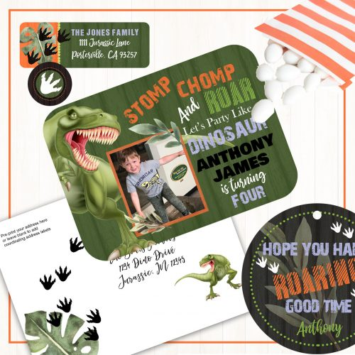 Dinosaur Theme Birthday