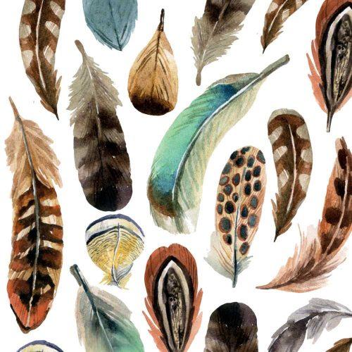 feather thanksgiving beverage napkin