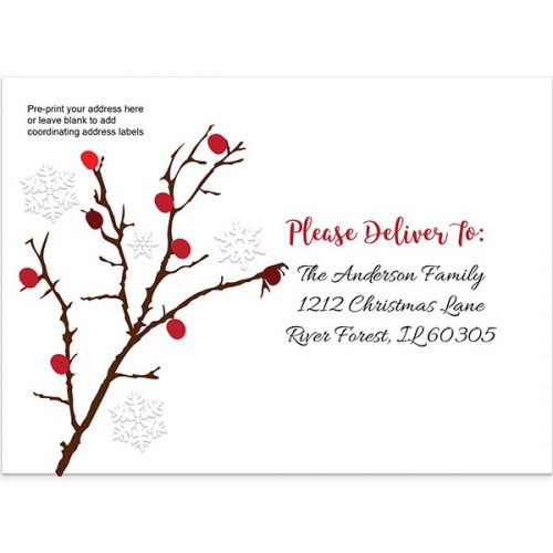 Holiday Envelopes & Liners