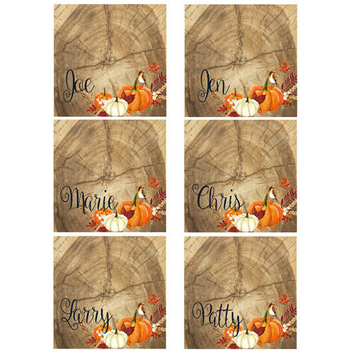 thanksgiving pumpkin name place cards